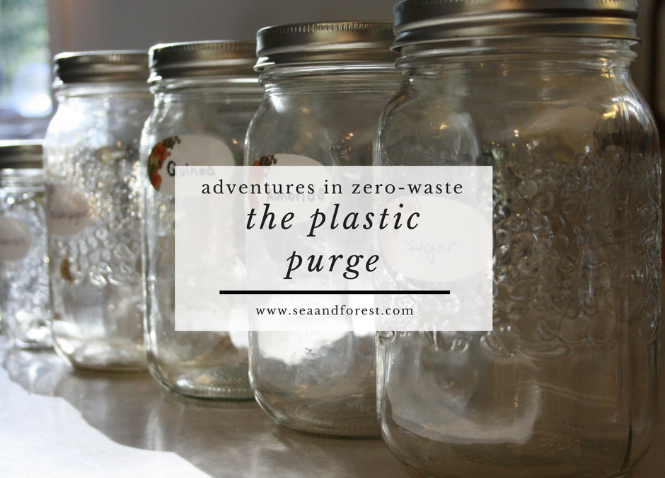Adventures in Zero Waste: The Plastic Purge